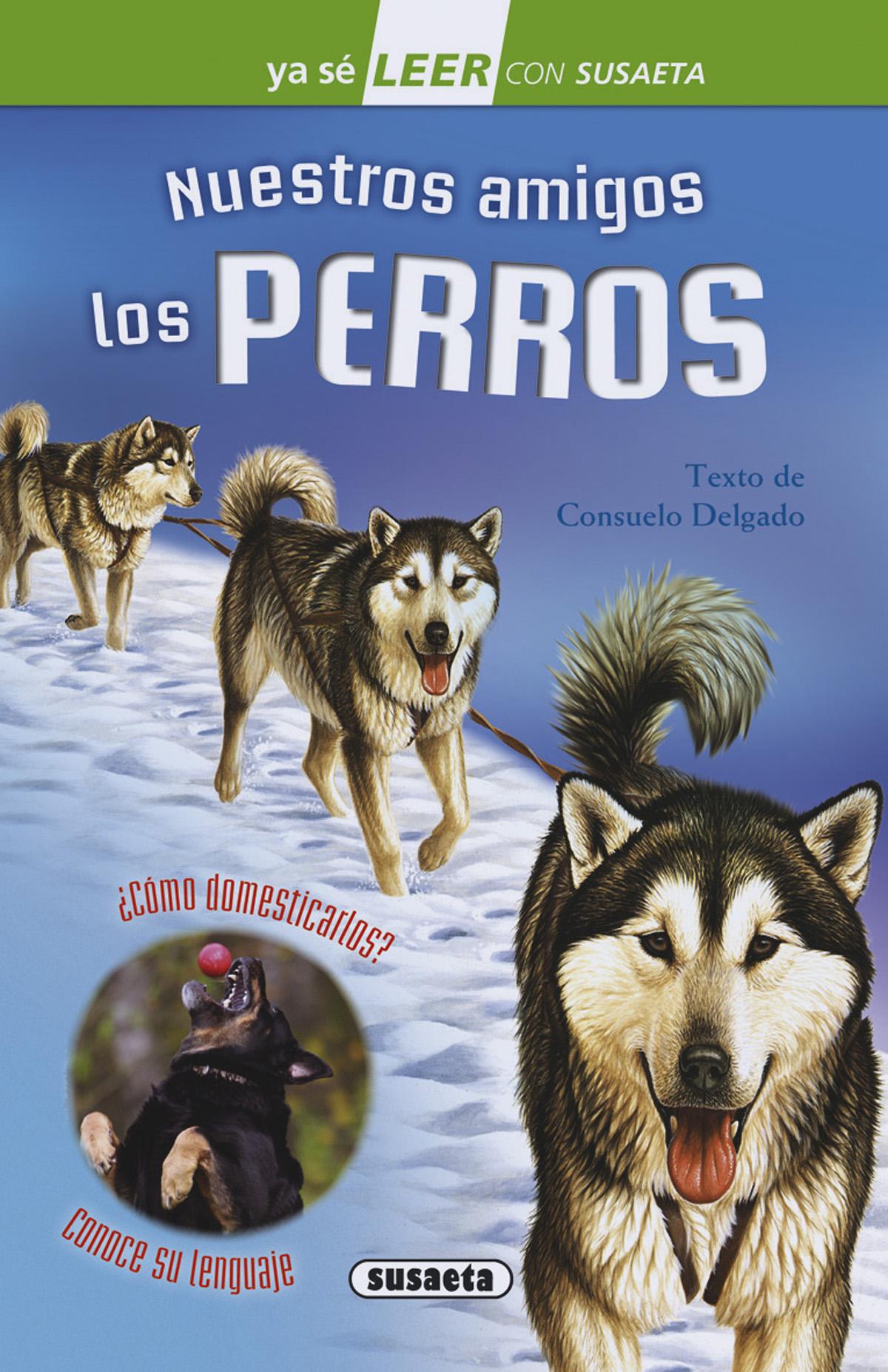 NUESTROS AMIGOS LOS PERROS 2006015